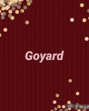 Goyard Premium